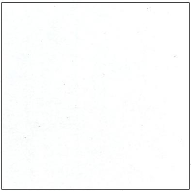 blancoporo